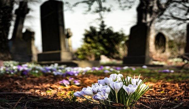 cementerio flores blancas duelo